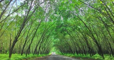 5 Tempat Wisata di Lampung Instagramable Banget